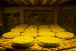 saint nectaire maison du fromage